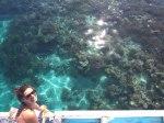 Increíble visibilidad del coral desde el barco en el parque nacional de Komodo.